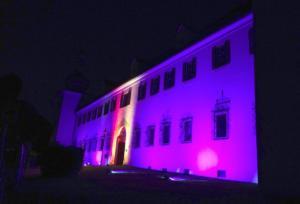 Konzert Schloss Ort 14.08.2019 - MV Offenhausen8